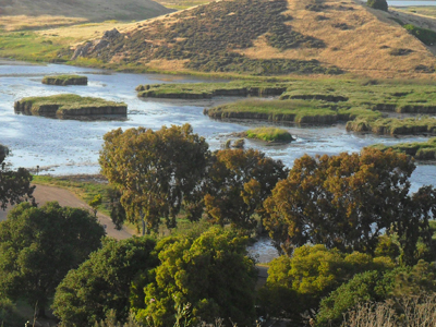 Coyote Hills in Fremont - East Bay Regional Parks District